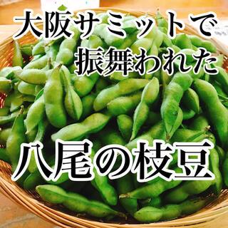 今しか食べられない!大阪八尾の枝豆 秀品 箱込み800g 送料無料(野菜)