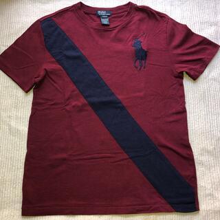 POLO RALPH LAUREN - ポロラルフローレンTシャツ
