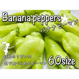 ほんのり甘い⁈(•̀ω•́ノ)ノ  生で食べられる バナナピーマン 無農薬 野菜(野菜)