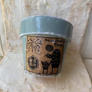 3号多肉ラベルリメイク鉢 ピスタチオグリーン リメ鉢 植木鉢 リメイク缶 リメ缶(プランター)