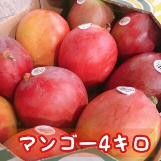 コストコ - 大人気! アップルマンゴー 4kg 大玉 10玉前後 マンゴー コストコ