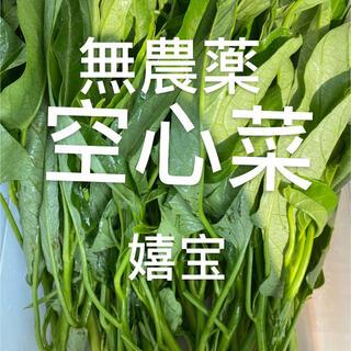 無農薬空芯菜400g(野菜)