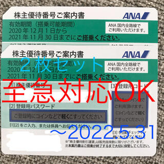 エーエヌエー(ゼンニッポンクウユ)(ANA(全日本空輸))のANA株主優待券 2枚セット(その他)