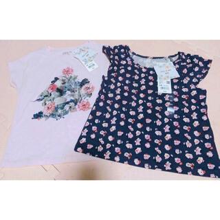 PAUL & JOE - 新品タグ付き ポール&ジョー Tシャツ 2枚で1300円‼︎