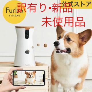 フルボ(Furbo)のFurbo ドッグカメラ(その他)