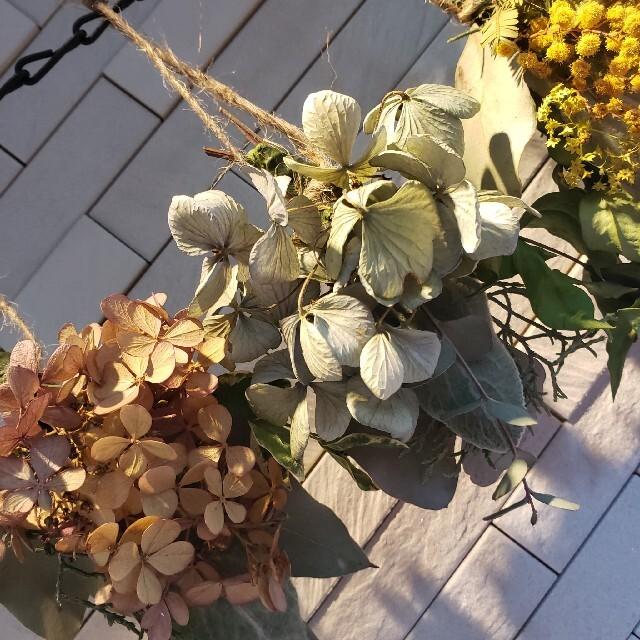 ドライフラワー ラベンダーのスワッグとミニスワッグ5個 ハンドメイドのフラワー/ガーデン(ドライフラワー)の商品写真