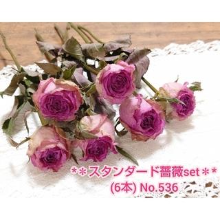 【即購入可】スタンダード 薔薇ドライフラワーセット No.536