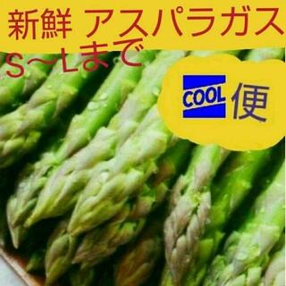 朝どりアスパラガス\(^_^)/(野菜)