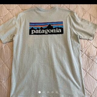 patagonia - patagonia パタゴニア Tシャツ カットソー P-6