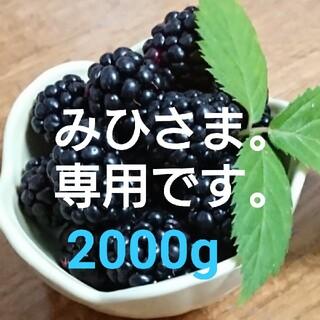 みひさま。専用。送料込 冷凍 ブラックベリー 2000g(フルーツ)