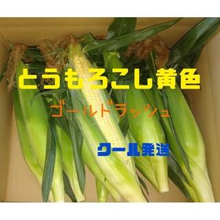 とうもろこし(黄色)10本(野菜)