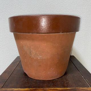 植木鉢 素焼き 10号 山野草 草花 果樹 花木 深鉢 鉢 盆栽鉢(その他)