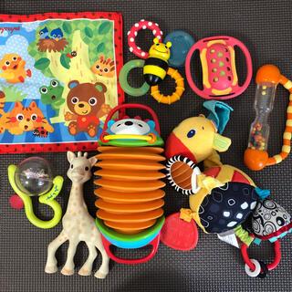 サッシー(Sassy)の赤ちゃん おもちゃ ガラガラ シャカシャカ アコーディオン ラトル 歯固めなど(がらがら/ラトル)