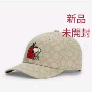 コーチ(COACH)の新品未使用 COACH×PEANU シグネチャー キャップ コーチスヌーピー帽子(キャップ)