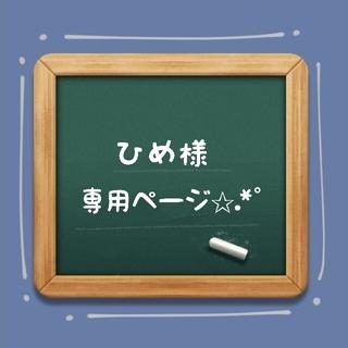 ☆ひめ様専用ページ✩.*˚(キーホルダー/ストラップ)