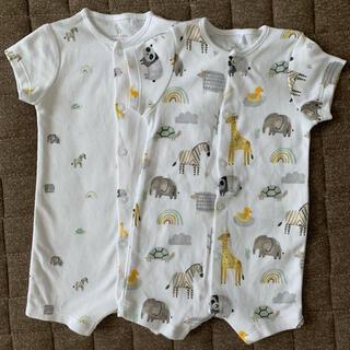 NEXT - 新品未使用next baby 半袖ボディスーツ