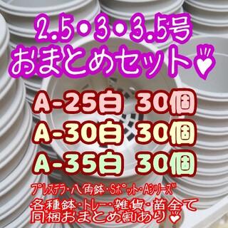 プラ鉢90個おまとめセット♪【2.5号・3号・3.5号鉢各30個】プレステラ多肉(プランター)