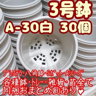 プラ鉢3号鉢【A-30】30個 スリット鉢 丸 プレステラ 多肉植物(プランター)
