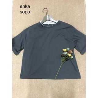 エヘカソポ(ehka sopo)の💕ehka sopo💕エヘカソポ💕Fサイズ💕襟レースチラ見せトップス💕(カットソー(半袖/袖なし))