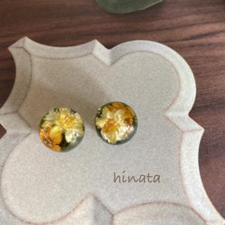 【値下げsale】ボタニカルのまん丸イヤリング/ピアス