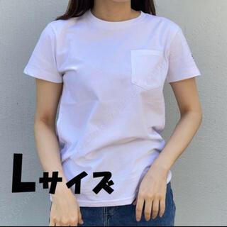 ザノースフェイス(THE NORTH FACE)のNorth Face Tシャツ(シャツ/ブラウス(半袖/袖なし))