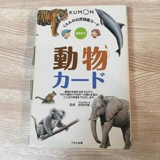 くもん 動物カード(知育玩具)