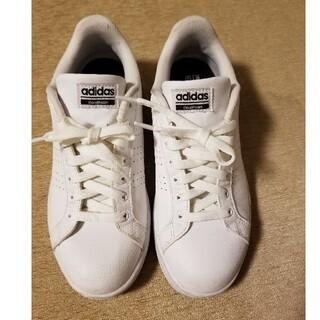 adidas - アディダス スニーカー24.5