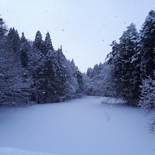 コーセー(KOSE)の【60回分】★サンプル肌潤クリーム★米肌★コーセー★日本★(フェイスクリーム)