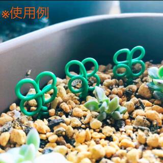 クローバー 形 多肉 植物 ランナー ピン ガーデンピック 葉挿し 押さえ(その他)