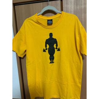 ゴールドジム tシャツ