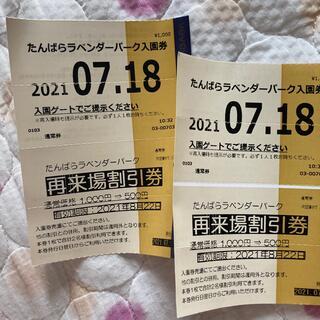 たんばらラベンダーパーク半額チケット(その他)