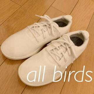 IENA - 【美品】オールバーズ allbirds  Wool Runners ホワイト