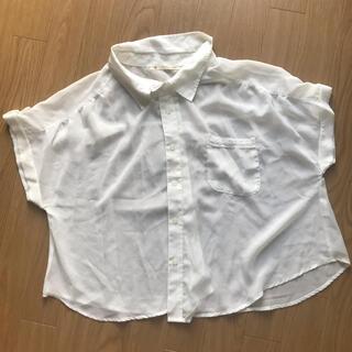マジェスティックレゴン(MAJESTIC LEGON)のシャツ(シャツ/ブラウス(半袖/袖なし))