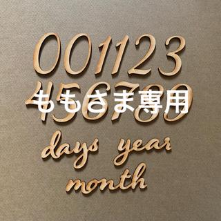 木製レターバナー 月齢フォトセットF /ニューボーン 100日祝 マンスリー