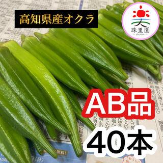 高知県産 オクラ おくら 40本 即購入OK 産地直送 鮮度抜群 夏野菜