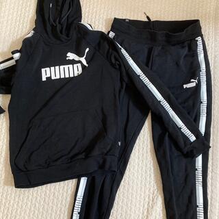 PUMA - PUMA ジャージ上下セット