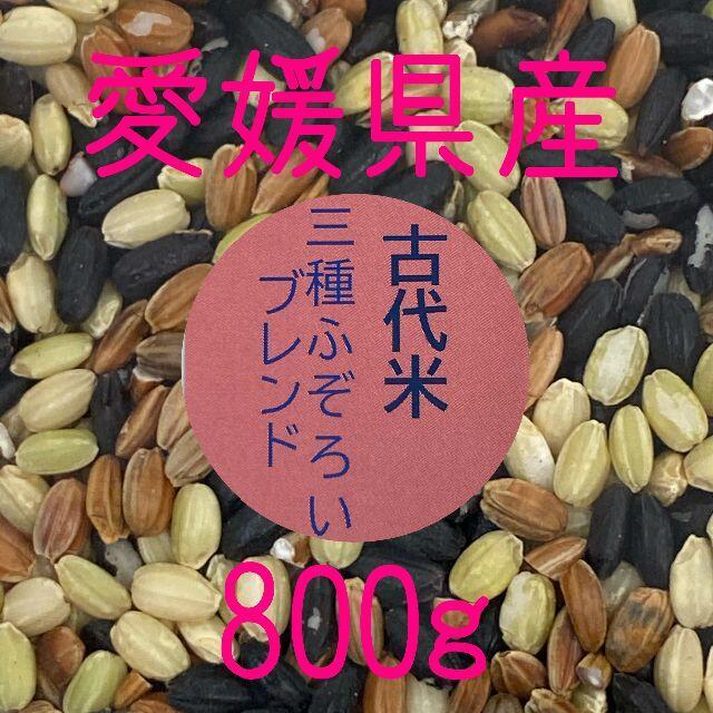 古代米3種ふぞろいブレンド 愛媛県産 800g 食品/飲料/酒の食品(米/穀物)の商品写真