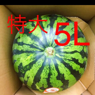 山形県産 尾花沢スイカ 5Lサイズ(フルーツ)