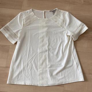 エイチアンドエム(H&M)のH&M  白トップス  半袖(シャツ/ブラウス(半袖/袖なし))