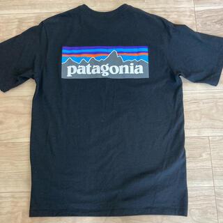 patagonia - ❁patagonia パタゴニア トップス 半袖 Tシャツ❁