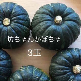 坊ちゃんかぼちゃ 3玉 無農薬 コンパクトボックス(野菜)