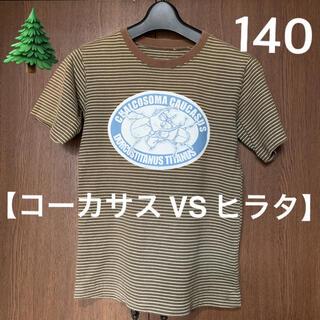 フェリシモ(FELISSIMO)の【フェリシモ🌲】パワージェネレーション   ボーダーTシャツ (Tシャツ/カットソー)