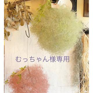 むっちゃん様専用〜グリーンスモークツリーのフラワーボール〜(ドライフラワー)