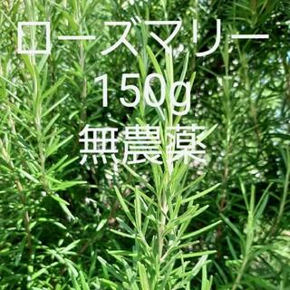 採れたて ハーブ ローズマリー150g 切り枝 無農薬(野菜)