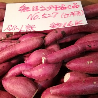 超お得!! 訳あり☆限定品☆ねっとり甘い貯蔵品紅はるかB品C品約16Kです。(野菜)