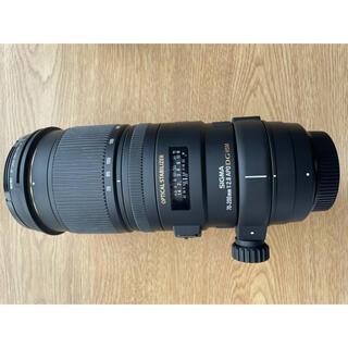 シグマ APO 70-200mm F2.8IIEX DG HSM ニコン用