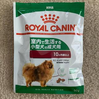 ROYAL CANIN - 試供品 ロイヤルカナン 室内で生活する小型犬の成犬用