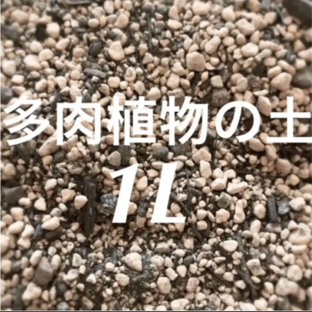 多肉植物の土 培養土 約1リットル  即購入歓迎❣️ ハンドメイドのフラワー/ガーデン(その他)の商品写真