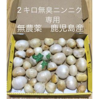 無農薬  無臭ニンニク   安心安全 鹿児島産 送料込み 2キロ(野菜)