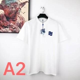【新品未使用】ADERERRORxメゾンキツネ Tシャツ 白 A2